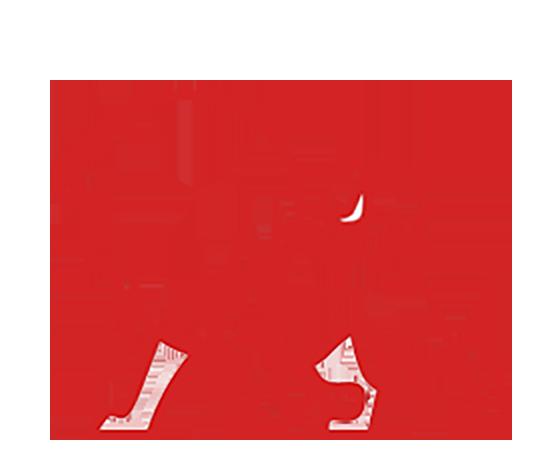 Pro Lion